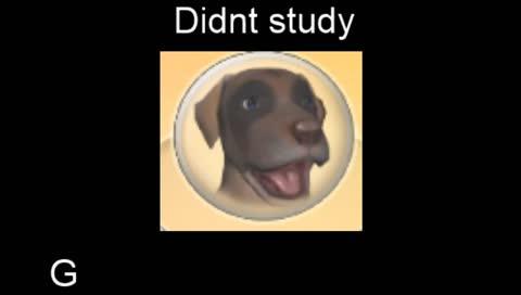 jerma makes meme (LIVE ON STREAM)
