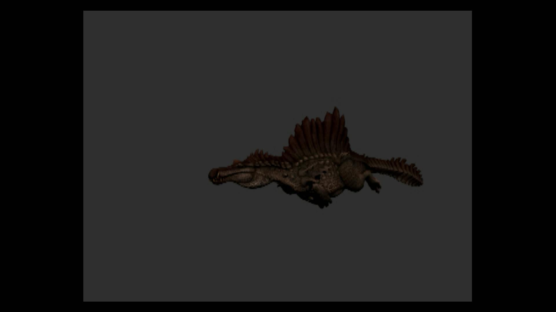 Hypo-Spino Swim animation - Twitch