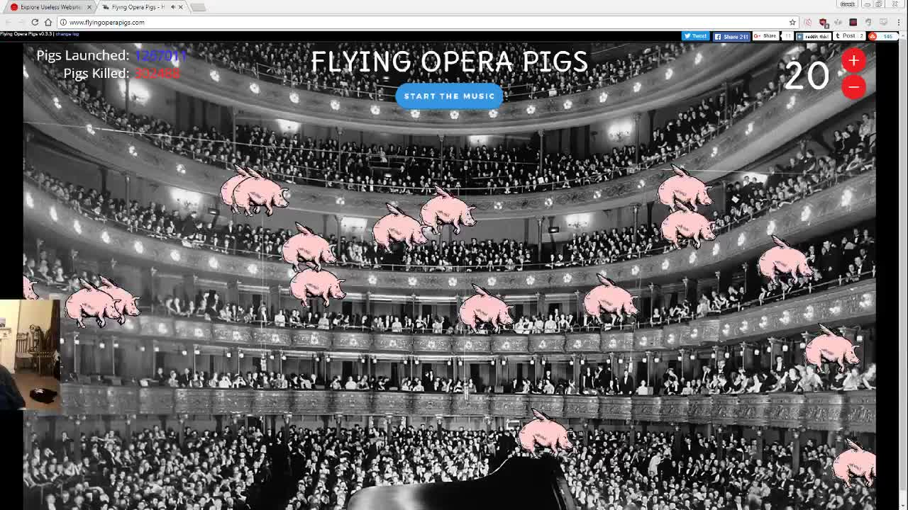 Image result for flying opera pigs