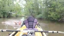 kayak and fishing