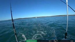 Australia - The Ocean - Twitter/Instagram @theRealShooKon3