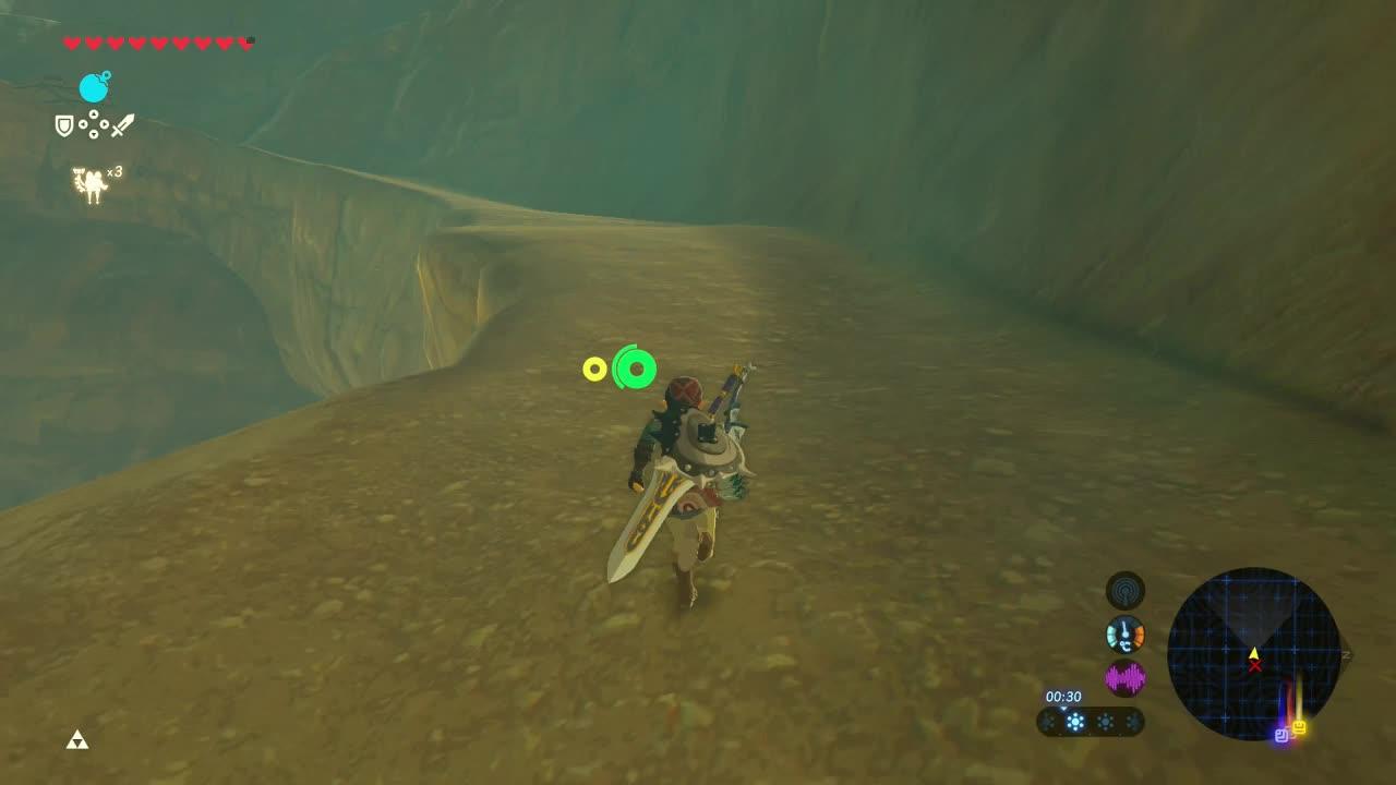 Helloween4545 Zelda Breath Of The Wild Thunderblight