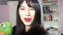 [Eng/中文/한국어] Chat with me~