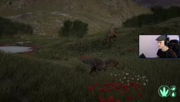 The+life+and+death+of+a+T-rex