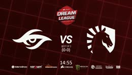 Team Liquid -vs- Team Secret (bo3), CORSAIR DreamLeague S11 Group A, Adekvat & Mortalles