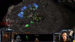 Zerg+Commentary+Memes+%21wowstory+%21social+%21treats+%21video