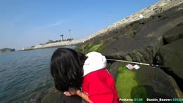 hole fishing in korea