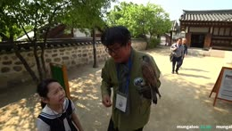 falconry training ( hawk training) seoul korea