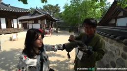Heosu turn training a Falcon