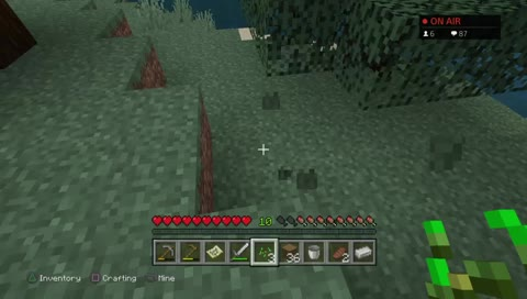 Minecraft ps4 with beforeach