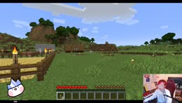 playing the minecrafts