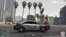 Dundee | NoPixel | @WhippyNotPoopy | Discord.gg/whippy
