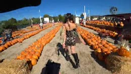 IRL Covid Test + PUMPKIN PATCH - ALMOST 500K ON TWITCH - !YouTube !Discord - Follow @jakenbakeLIVE on !Socials