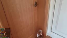 Kiki can open doors PogU