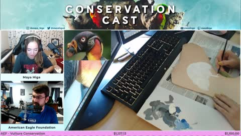 [VULTURE] CONSERVATION CAST E. 43 with American Eagle Foundation for vulture conservation | !guest !org