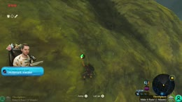 BotW Dog% Crowd Control! Help or Hurt me with the extension !cc