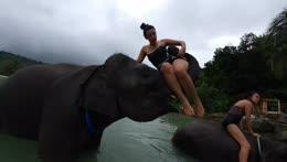 water elephant fun 4