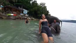 Swimming with Elephants! w/jane, Phuket island - ENG/ไทย (TTS $2/100bits) !keth !socials