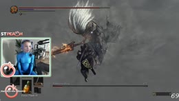 Nameless King DOWN LETS GO!