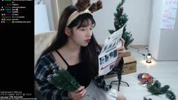 building Christmas tree 크리스마스트리 조립