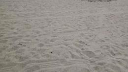 beach ⛱