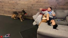 Doggo Time !build 24/7 STREAMATHON | We Stayed At The #1 Photod Hotel In The World https://youtu.be/JReBWHi5tb0