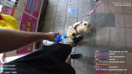 IRL, Japan - Special Kawagoe Trip (NEW AREA UNLOCKED) w/ !venese & !TheTokyoFoodie | 20% off subs | !discord !social