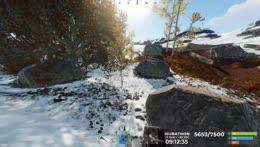 Rust drops again in near future?