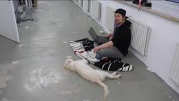 leon spielt just dogging