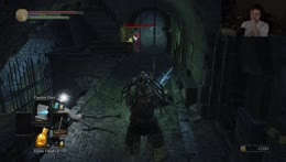 ds3 bug