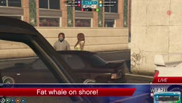 FAT WHALE ON SHORE!