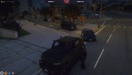 step out of the vehicle please