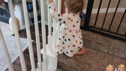 Emmy learns how to use the stairs