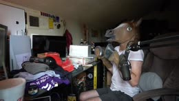 Asmongold the horse