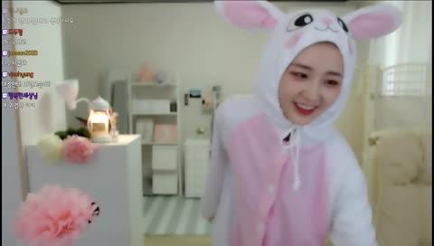 토끼의 what is love