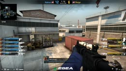Low HP Site Hold With Famas
