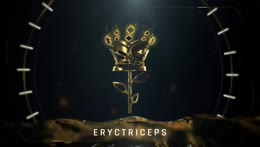 eryctriceps on the new s3 z1br and stream snipers