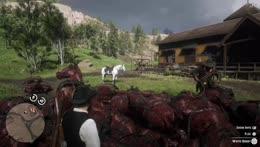 Horse+Mountain+