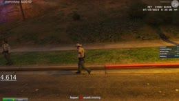 Zombie walk?