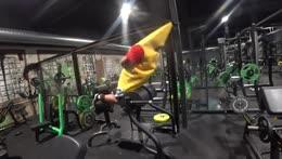 How a banana becomes erect