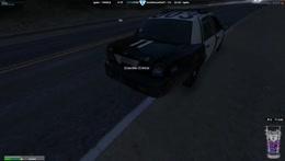 Clowning cops