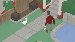 Gopnik Goose