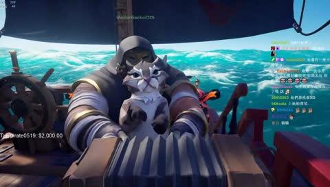 Ko 借貓玩大砲 貓在砲管裡也太可愛