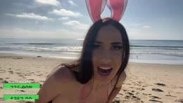 Lola Beach Bunny YMCA