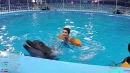 JustKeth swimming with dolphins and gets a kiss