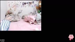 <<BABY66>>3/14 貓咪陪聊⎝༼ ◕д ◕ ༽⎠