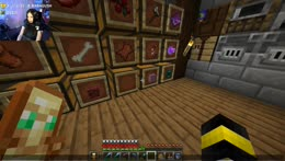 hardcore minecraft queeeeeeen day 9?