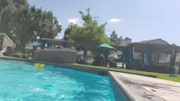 back and bi, pool day