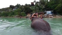 Splash Down! Pt 2