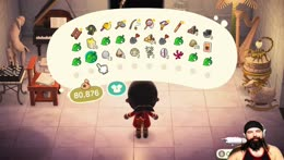 ANIMAL CROSSING AND CHAT